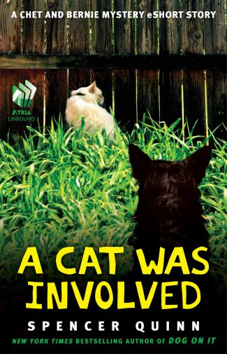 Cover for A Cat Was Involved by Spencer Quinn