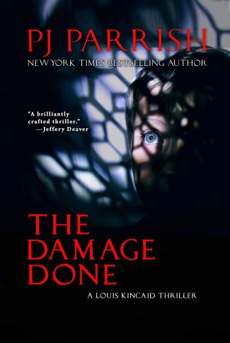 Cover of The Damage Done by PJ Parrish.